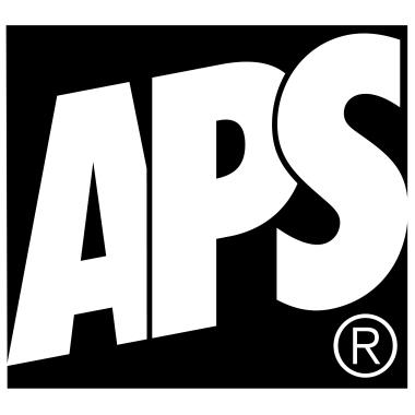 APS Wärmebehälter ECO 9l Elektro-Wasserbecken, Speisenbehälter GN 1/1 Polypropylen/Edelstahl schwarz